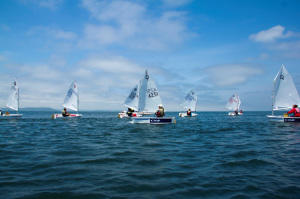 Optimist-Race1