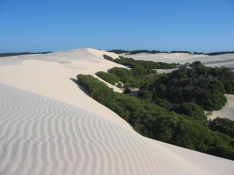 moreton-island-desert