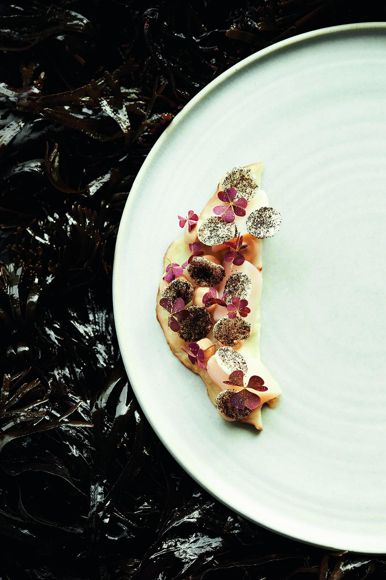 Морские гребешки с березовым соком и сельдереем