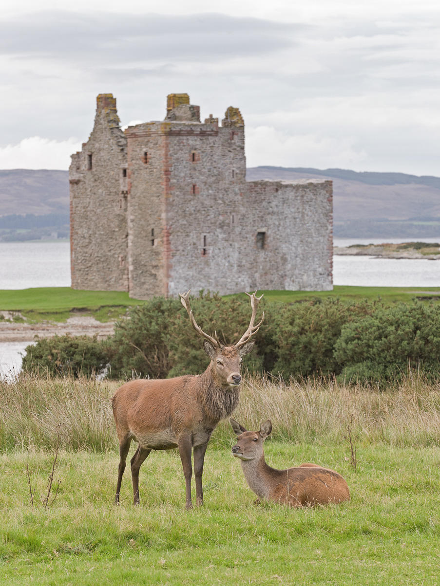 scotland_3