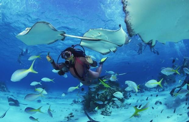 1085x1500_podvodnoe plavanie