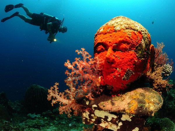 Diving in Pemuteran