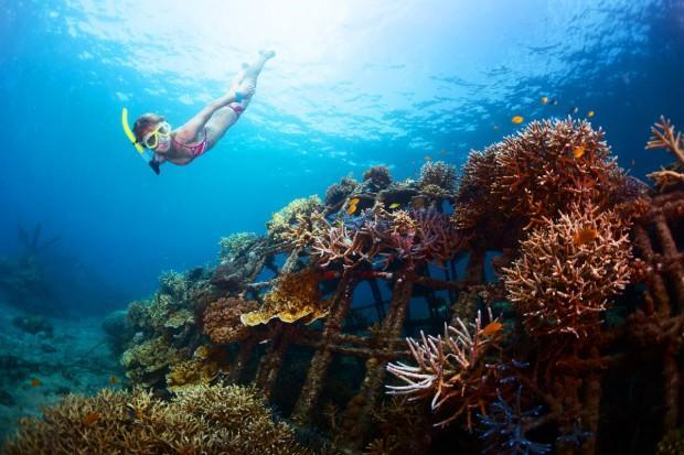 snorkelling-bali