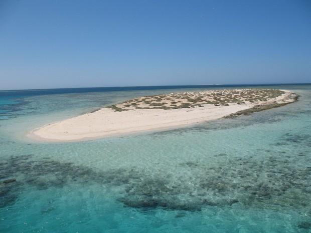 World___Egypt_Sandy_Island_off_the_coast_in_the_resort_of_Marsa_Alam__Egypt_066352_