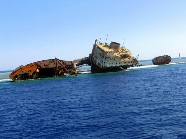 RELITTO DEL LOUILLA - GORDON REEF - SINAI, EGYPT