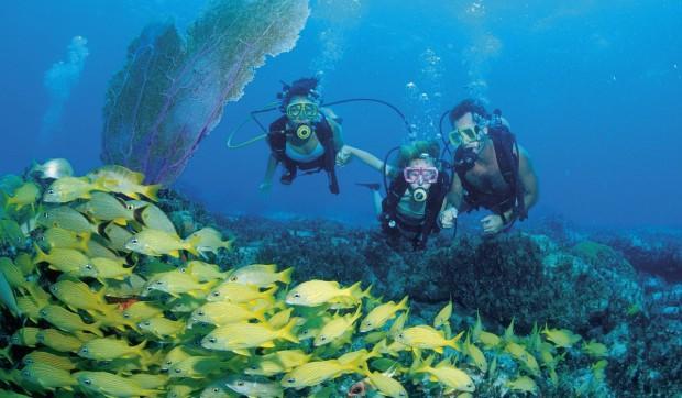 diving-na-bagamah