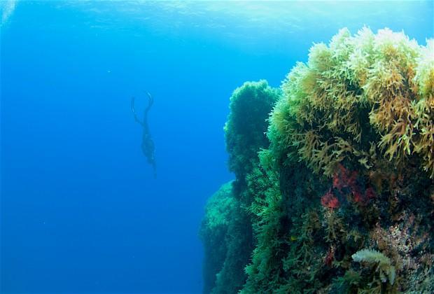 Гидрокосмос. Фото: Павел Дивин