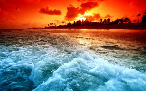 фото-Красное-море-Египет-art-214863