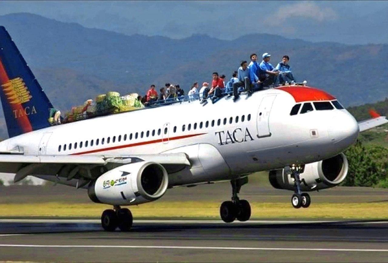 Приколы самолет картинки